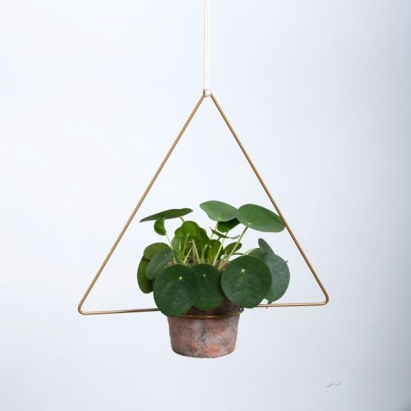 Trigona Hanging Planter Blumenampel gold 30 cm