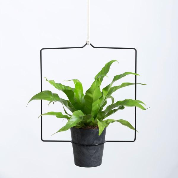 Quadra Hanging Planter Blumenampel schwarz 30 cm