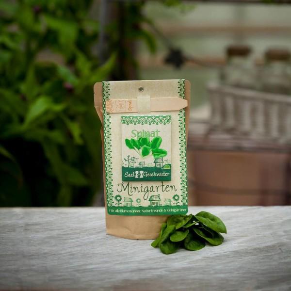 Spinat Minigarten DIY Anzuchset